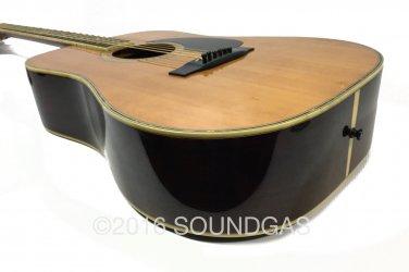 Morris W65M Acoustic Guitar