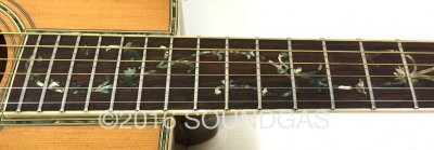 Morris W65M 'Tree Of Life' Acoustic Guitar