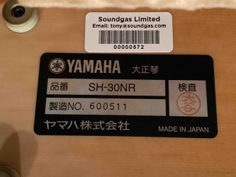 Toy Store: Yamaha SH-30NR Violyre Taishogoto