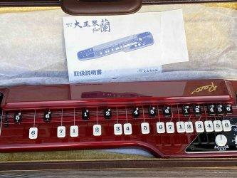 Toy Store: Suzuki Ran Electric Taishogoto